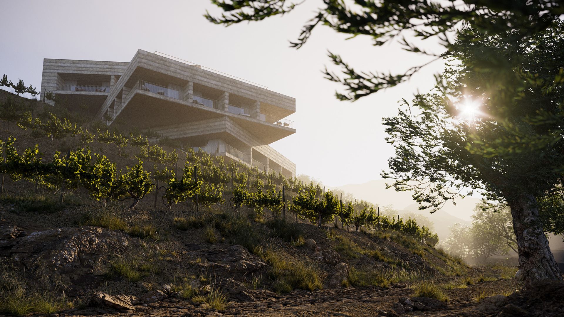 home eleven visualisation cinemagraph Douro